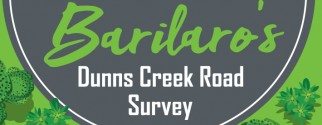John barilaro mp dunns creek road survey brochure