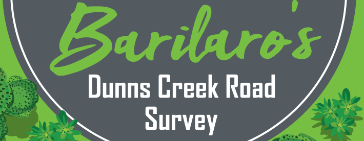John barilaro mp dunns creek road survey brochure